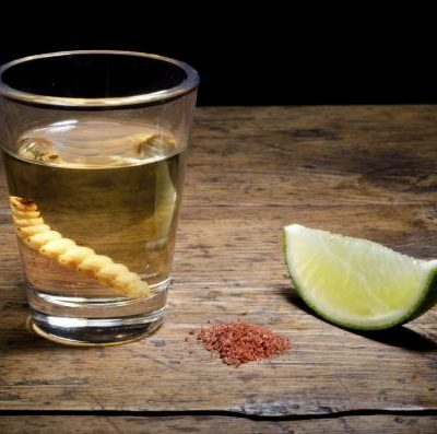 degustazione-tequila-mezcal-roma
